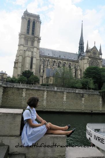 Notre Dame Fluss Aussicht