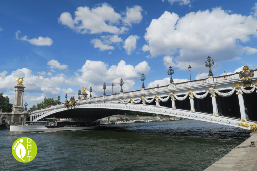 Paris Sehenswuerdigkeit Pont Alexandre III Bruecke
