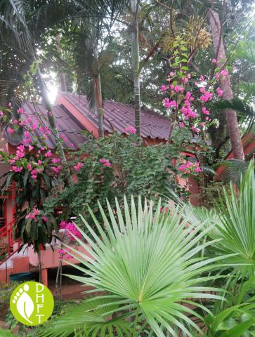 Koh Chang Sea Flower Resort Bungalows Tropisch
